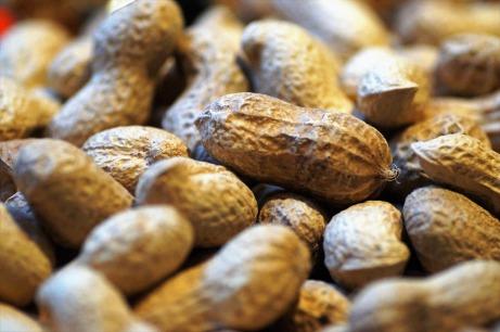 peanuts-2163043_1920